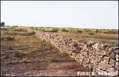Stenmur på Stora Alvaret, Öland